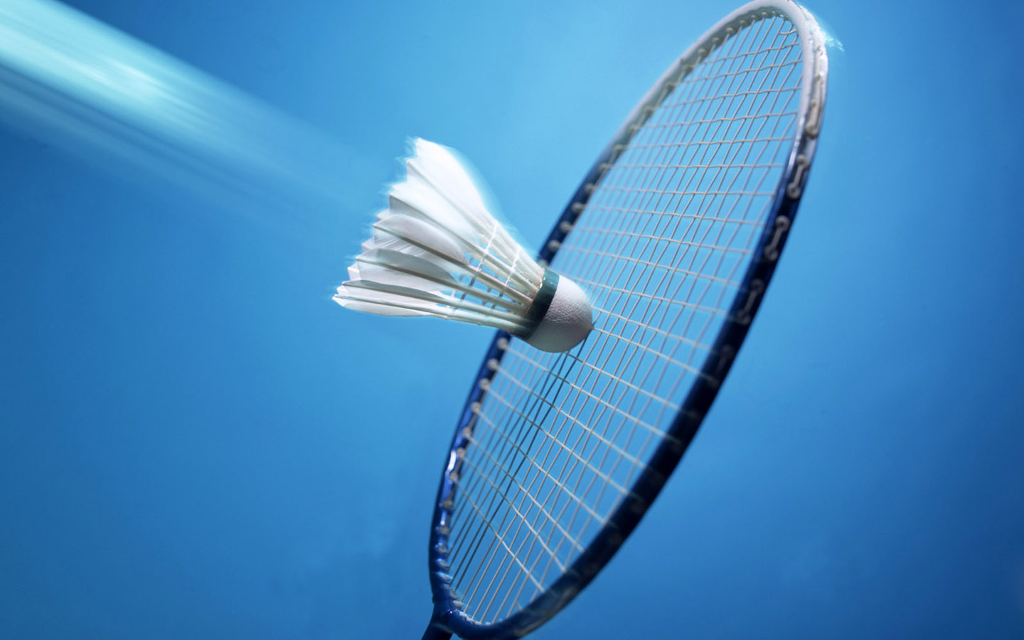 Badminton Betting Handicap – Knowledge on the odds